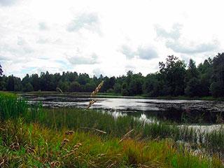 Филькино озеро