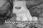 Детская одежда и обувь «Кошкин дом» - Организация закрылась!